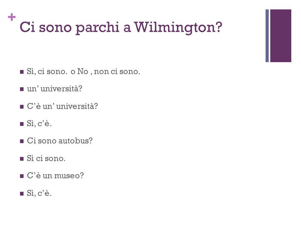 + Ci sono parchi a Wilmington? Sì, ci sono. o No, non ci sono. un università? Cè un università? Sì, cè. Ci sono autobus? Sì ci sono. Cè un museo? Sì,