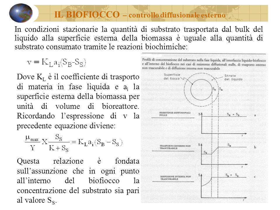 In condizioni stazionarie la quantità di substrato trasportata dal bulk del liquido alla superficie esterna della biomassa è uguale alla quantità di s