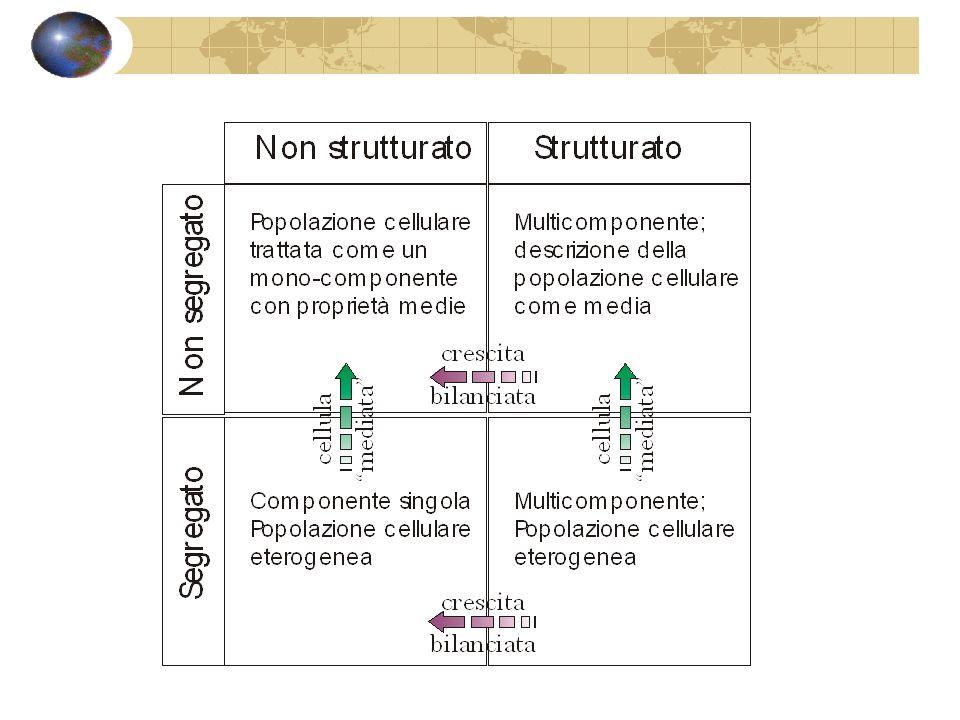 La cinetica di crescita di popolazione a cui si farà riferimento nel seguito è quella ottenuta nellipotesi di modello non strutturato - ovvero la massa cellulare, o la sua concentrazione, sono sufficienti a caratterizzare lintera fase biologica (cinetica di crescita bilanciata).