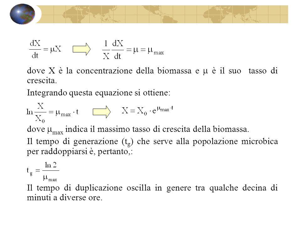 dove X è la concentrazione della biomassa e è il suo tasso di crescita. Integrando questa equazione si ottiene: dove max indica il massimo tasso di cr