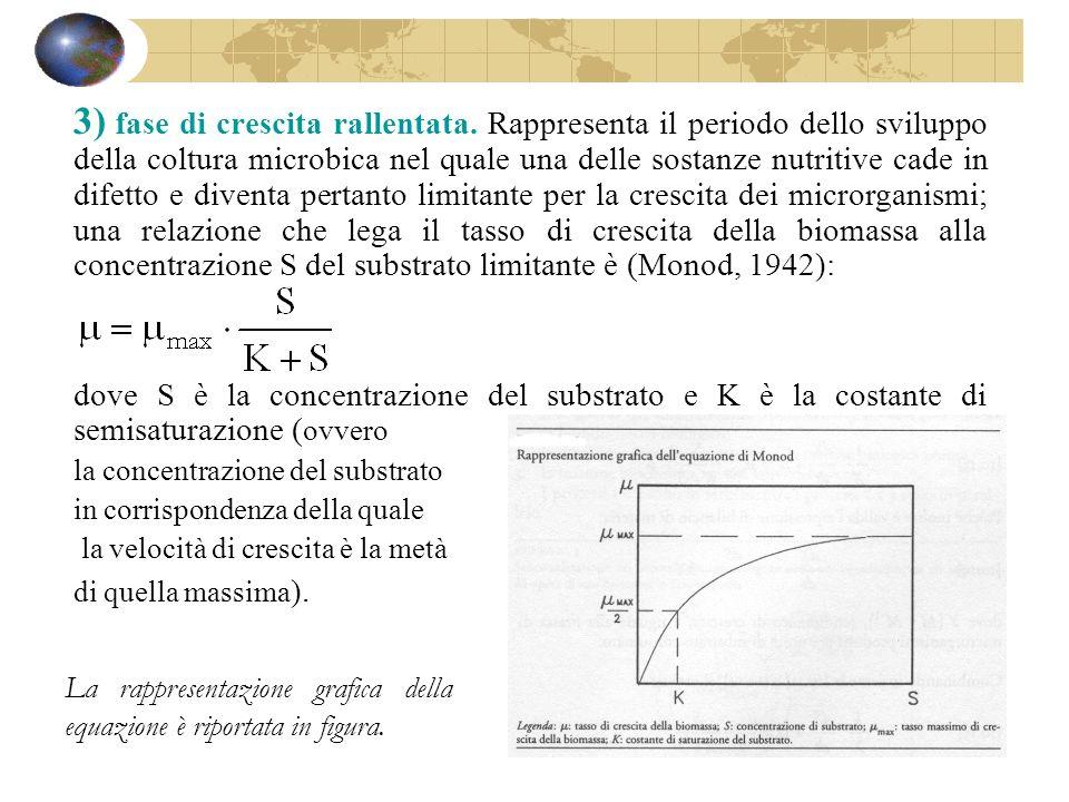 3) fase di crescita rallentata. Rappresenta il periodo dello sviluppo della coltura microbica nel quale una delle sostanze nutritive cade in difetto e