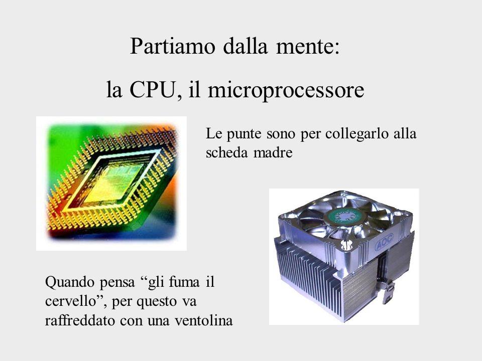 Partiamo dalla mente: la CPU, il microprocessore Le punte sono per collegarlo alla scheda madre Quando pensa gli fuma il cervello, per questo va raffr