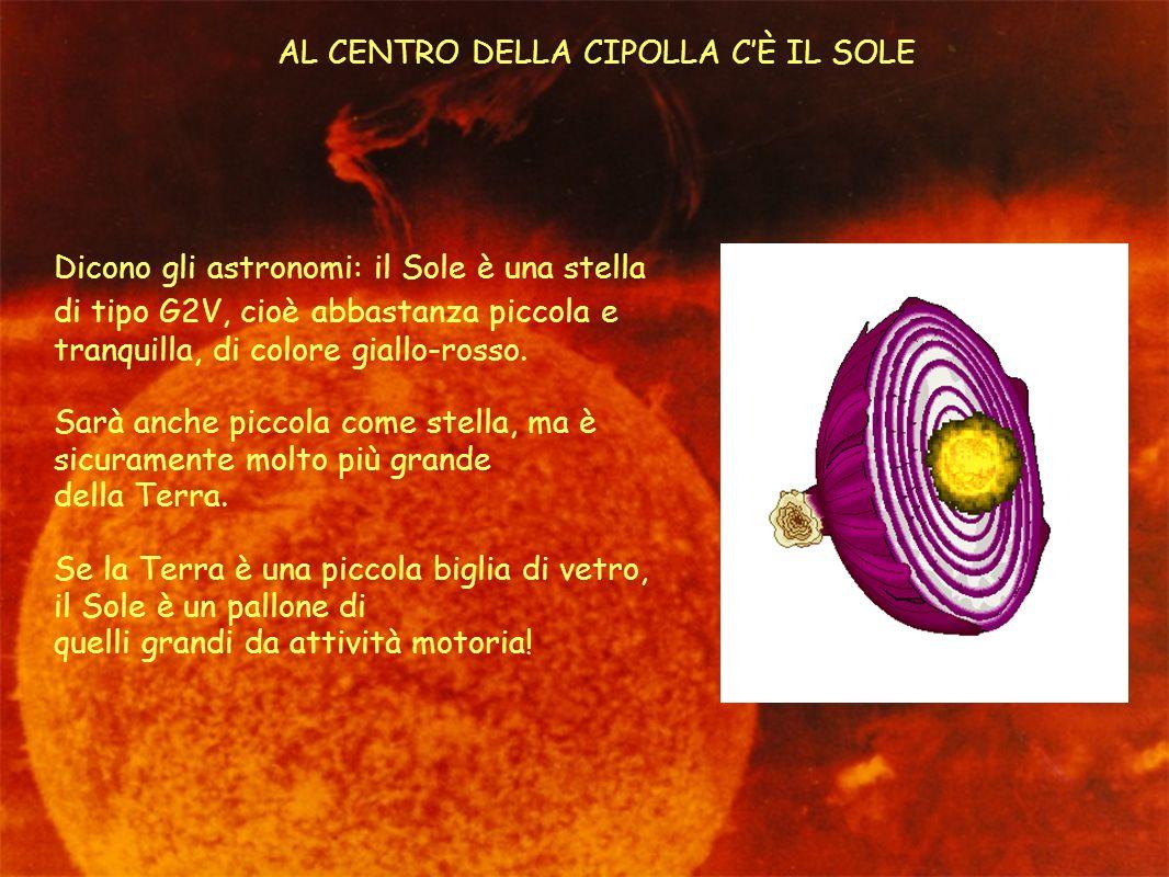 AL CENTRO DELLA CIPOLLA CÈ IL SOLE Dicono gli astronomi: il Sole è una stella di tipo G2V, cioè abbastanza piccola e tranquilla, di colore giallo-ross