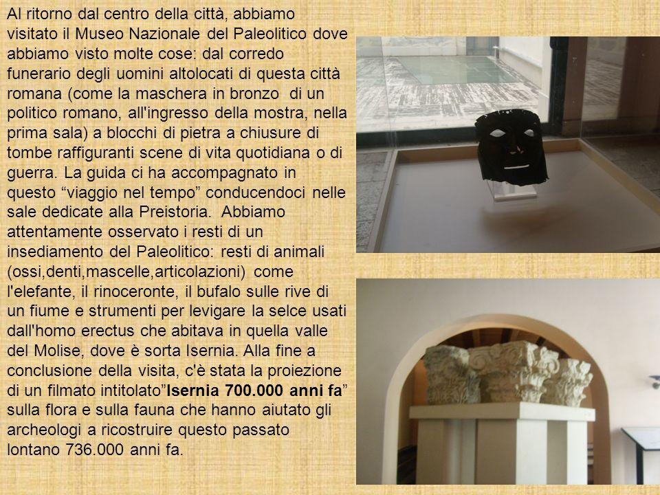Al ritorno dal centro della città, abbiamo visitato il Museo Nazionale del Paleolitico dove abbiamo visto molte cose: dal corredo funerario degli uomi
