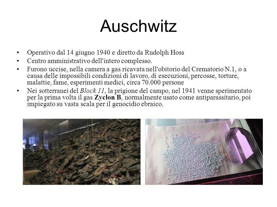Auschwitz Operativo dal 14 giugno 1940 e diretto da Rudolph Hoss Centro amministrativo dell'intero complesso. Furono uccise, nella camera a gas ricava