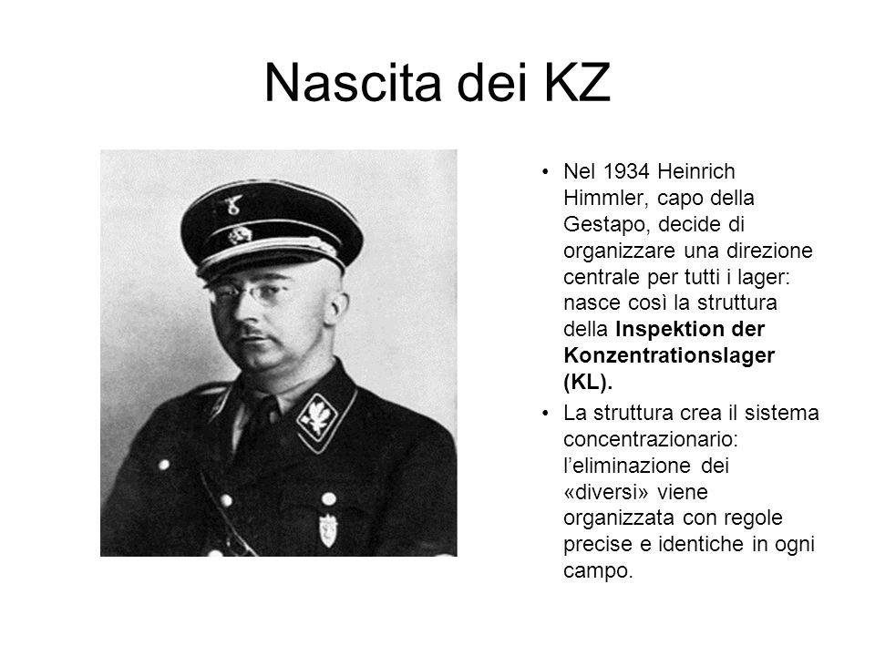 Nascita dei KZ Nel 1934 Heinrich Himmler, capo della Gestapo, decide di organizzare una direzione centrale per tutti i lager: nasce così la struttura