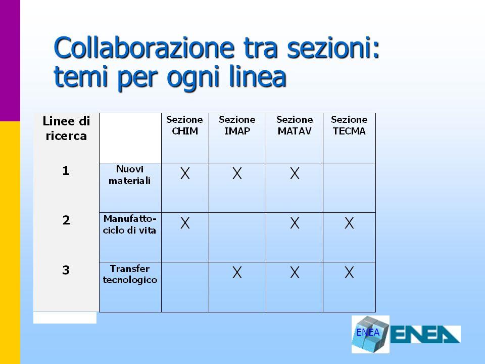 ENEA Collaborazione tra sezioni: temi per ogni linea