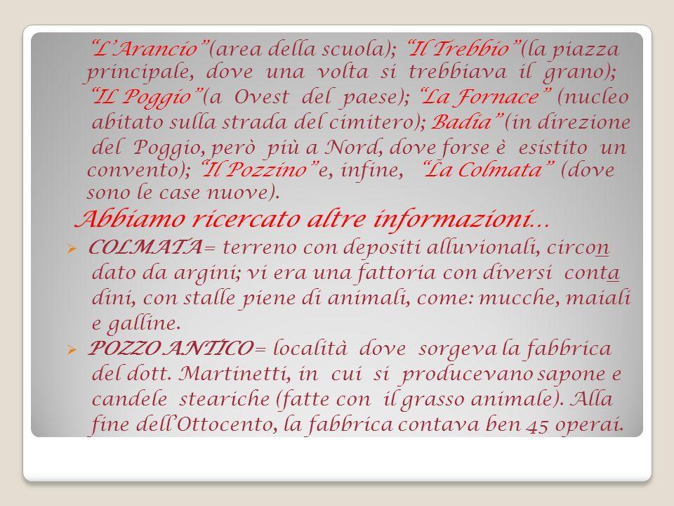 NORD EST OVEST SUD LEGENDA Ulivi Macchia El. antropici Fiume Arno