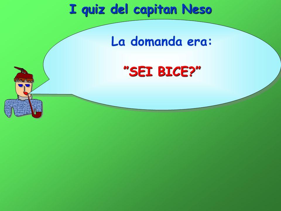 I quiz del capitan Neso La domanda era: SEI BICE? La domanda era: SEI BICE?
