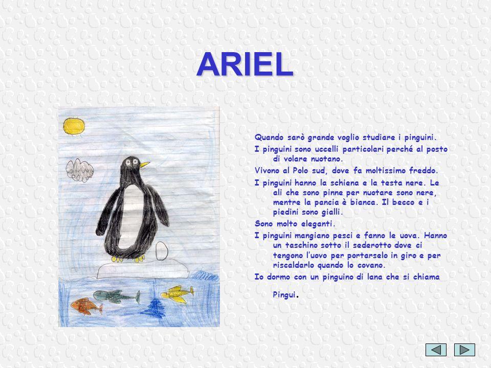 ARIEL Quando sarò grande voglio studiare i pinguini. I pinguini sono uccelli particolari perché al posto di volare nuotano. Vivono al Polo sud, dove f