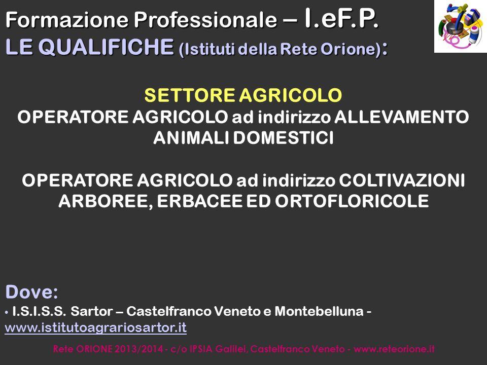 Rete ORIONE 2013/2014 - c/o IPSIA Galilei, Castelfranco Veneto - www.reteorione.it ISTRUZIONE PROFESSIONALE
