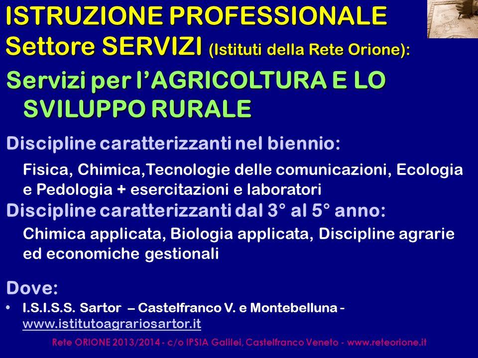 Rete ORIONE 2013/2014 - c/o IPSIA Galilei, Castelfranco Veneto - www.reteorione.it ISTRUZIONE PROFESSIONALE Settore SERVIZI (Istituti della Rete Orione): Servizi per lENOGASTRONOMIA E LOSPITALITA ALBERGHIERA Discipline caratterizzanti nel biennio: Fisica, Chimica, Sc.