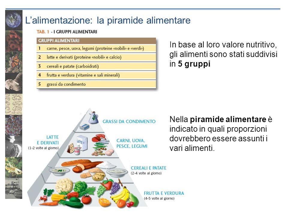 Lalimentazione: la piramide alimentare In base al loro valore nutritivo, gli alimenti sono stati suddivisi in 5 gruppi Nella piramide alimentare è ind
