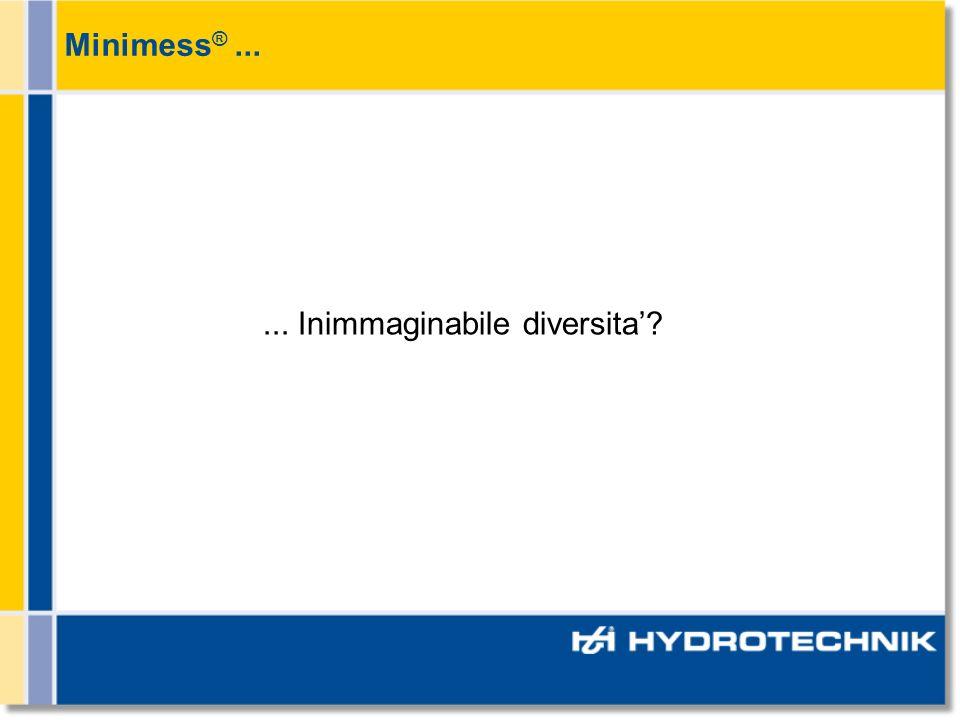 Minimess ®...... Inimmaginabile diversita?