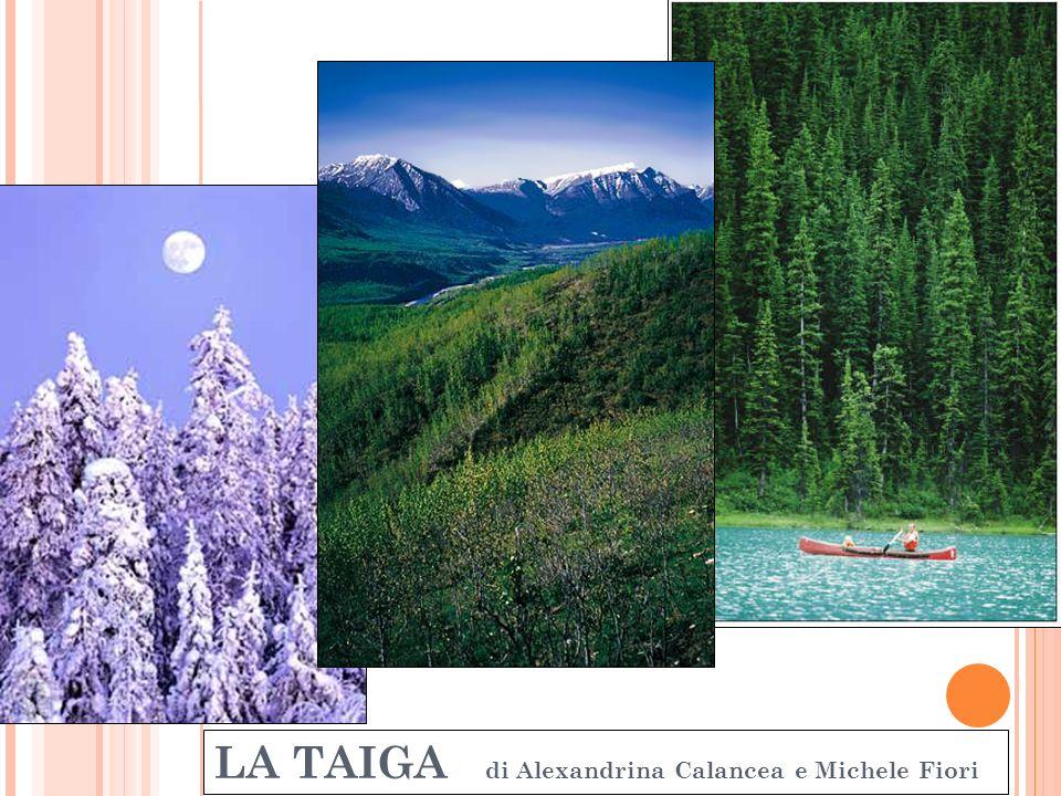 Insediamenti umani La taiga è un ambiente poco favorevole al popolamento.