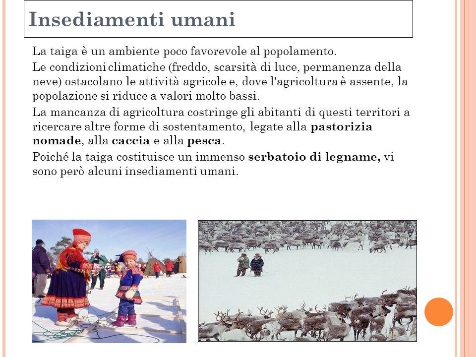 Insediamenti umani La taiga è un ambiente poco favorevole al popolamento. Le condizioni climatiche (freddo, scarsità di luce, permanenza della neve) o