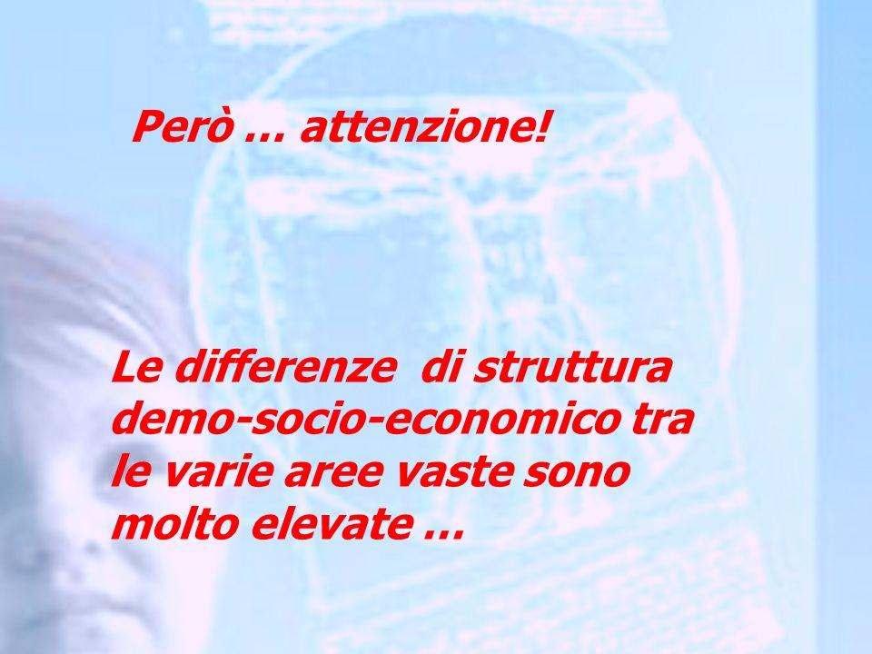 Le differenze di struttura demo-socio-economico tra le varie aree vaste sono molto elevate … Però … attenzione!