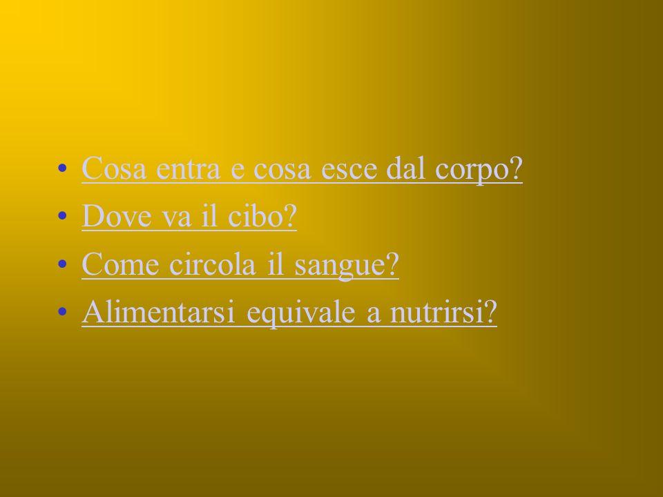 LABORATORIO SCIENZE Classe 4^ Via Cavour A.S.2006 / 2007