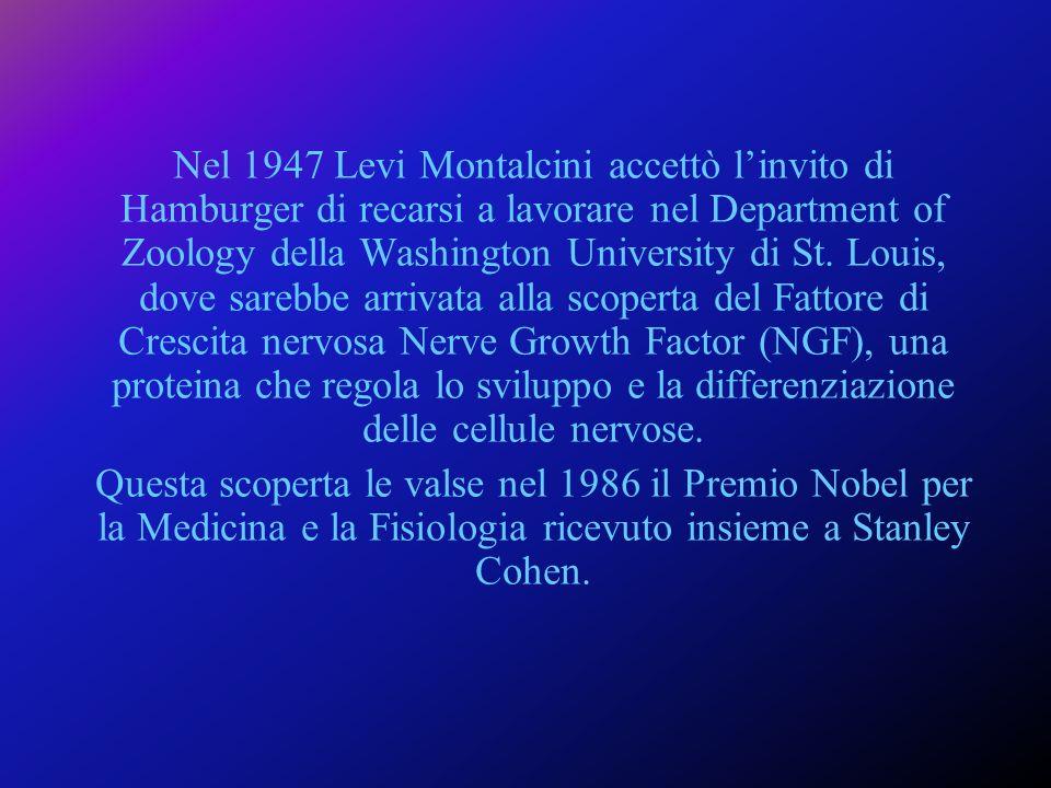 Rita Levi Montalcini è il simbolo di una vita dedicata alla ricerca.