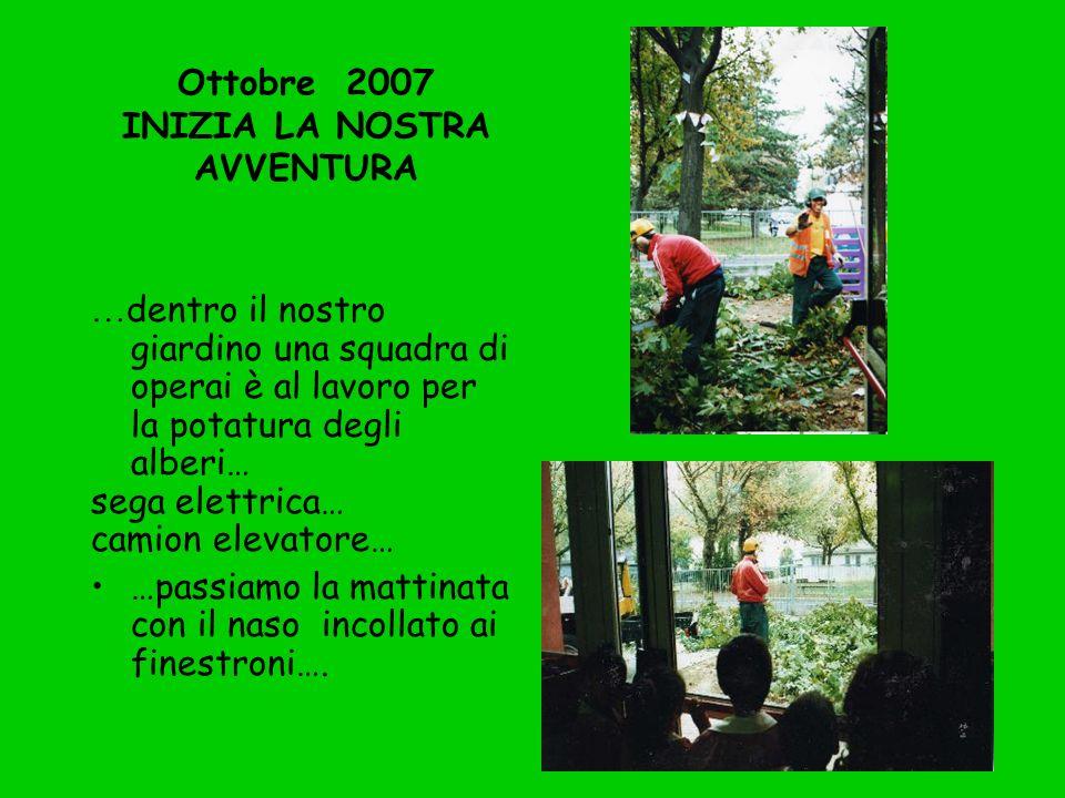Ottobre 2007 INIZIA LA NOSTRA AVVENTURA … dentro il nostro giardino una squadra di operai è al lavoro per la potatura degli alberi… sega elettrica… ca