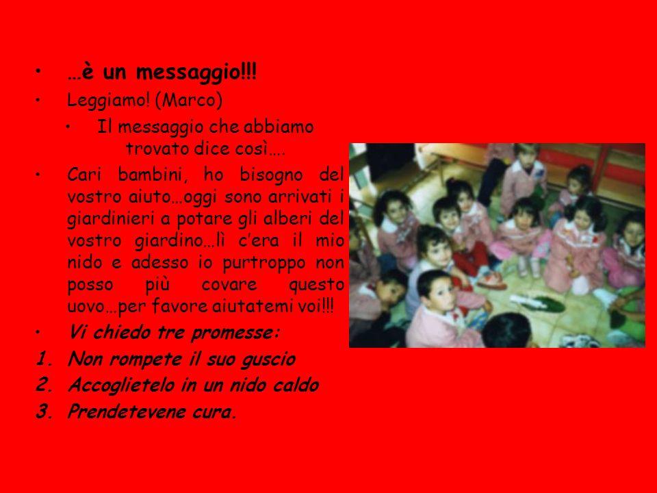 QUANDO SONO NATO ERO COSI questo sono io … mi hanno chiamato Marco… …sono nato il 14 ottobre 2002 a Rimini nellospedale qua vicino… …qui di sicuro ho zero anni… …la mamma mi ha raccontato che dormivo molto e piangevo sempre forse perché Andrea (mio fratello) non mi lasciava stare… …per me è bello essere piccolo, mangiavo la titta …poi mi tenevano sempre in braccio, ero pesante e poi stavo nella carozzina (ma adesso ce lha mio cugino )