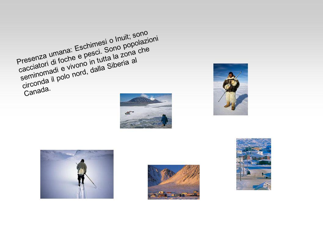 Presenza umana: Eschimesi o Inuit; sono cacciatori di foche e pesci. Sono popolazioni seminomadi e vivono in tutta la zona che circonda il polo nord,