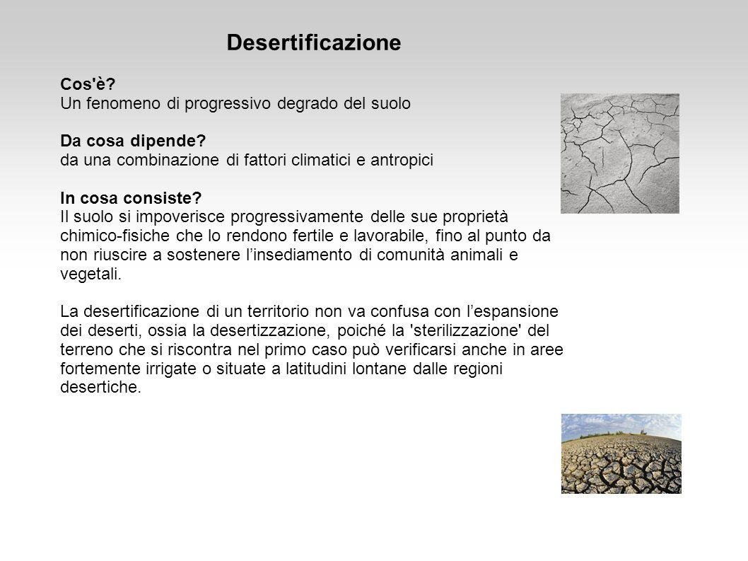Desertificazione Cos'è? Un fenomeno di progressivo degrado del suolo Da cosa dipende? da una combinazione di fattori climatici e antropici In cosa con