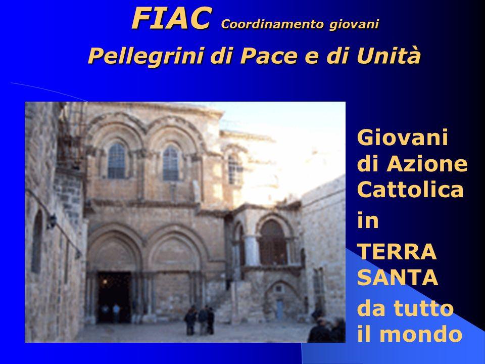 FIAC Coordinamento giovani Pellegrini di Pace e di Unità Giovani di Azione Cattolica in TERRA SANTA da tutto il mondo
