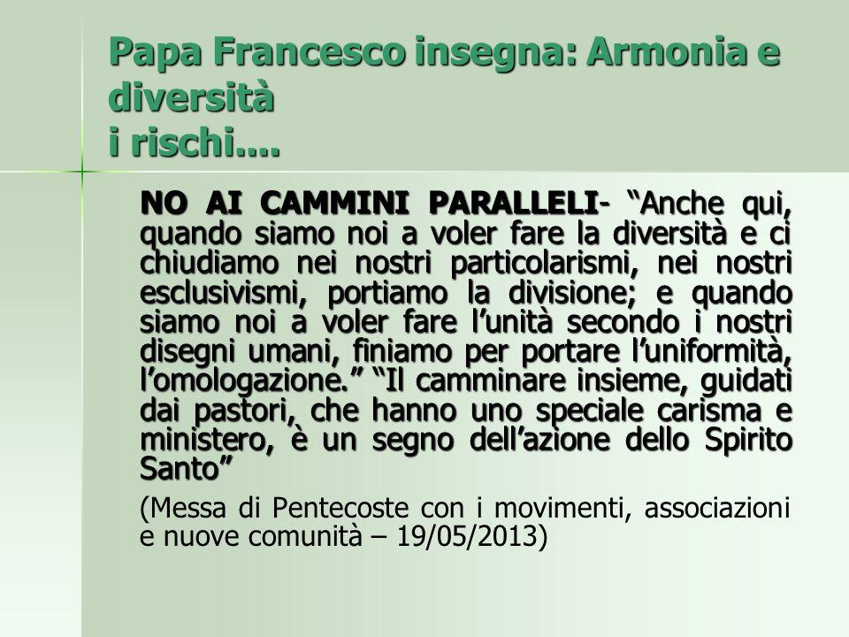 Papa Francesco insegna: Armonia e diversità i rischi....