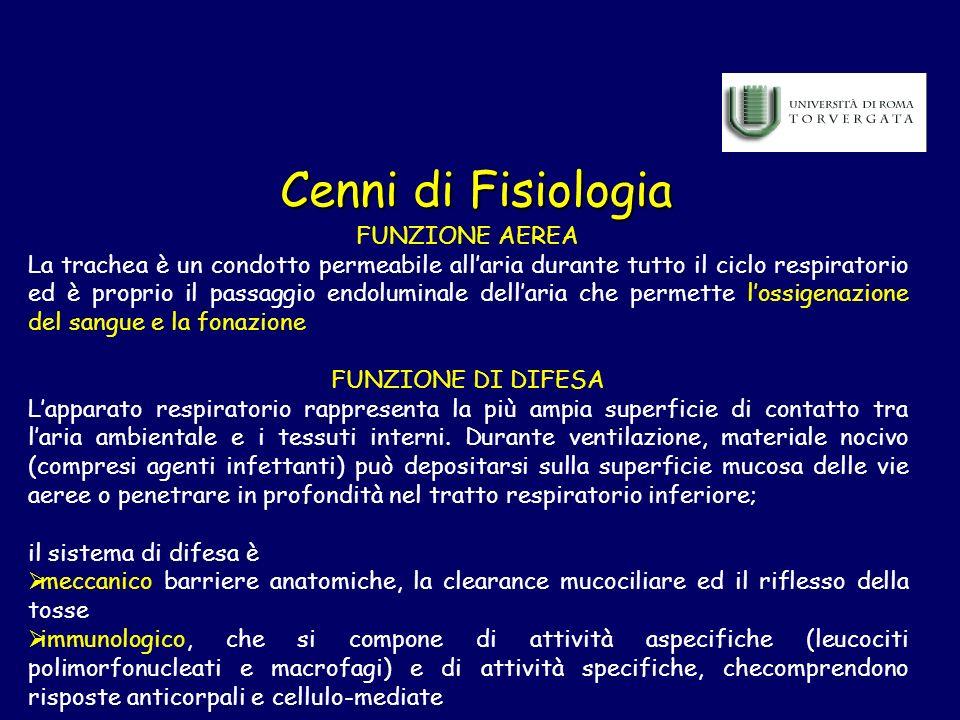 Cenni di Fisiologia FUNZIONE AEREA La trachea è un condotto permeabile allaria durante tutto il ciclo respiratorio ed è proprio il passaggio endolumin