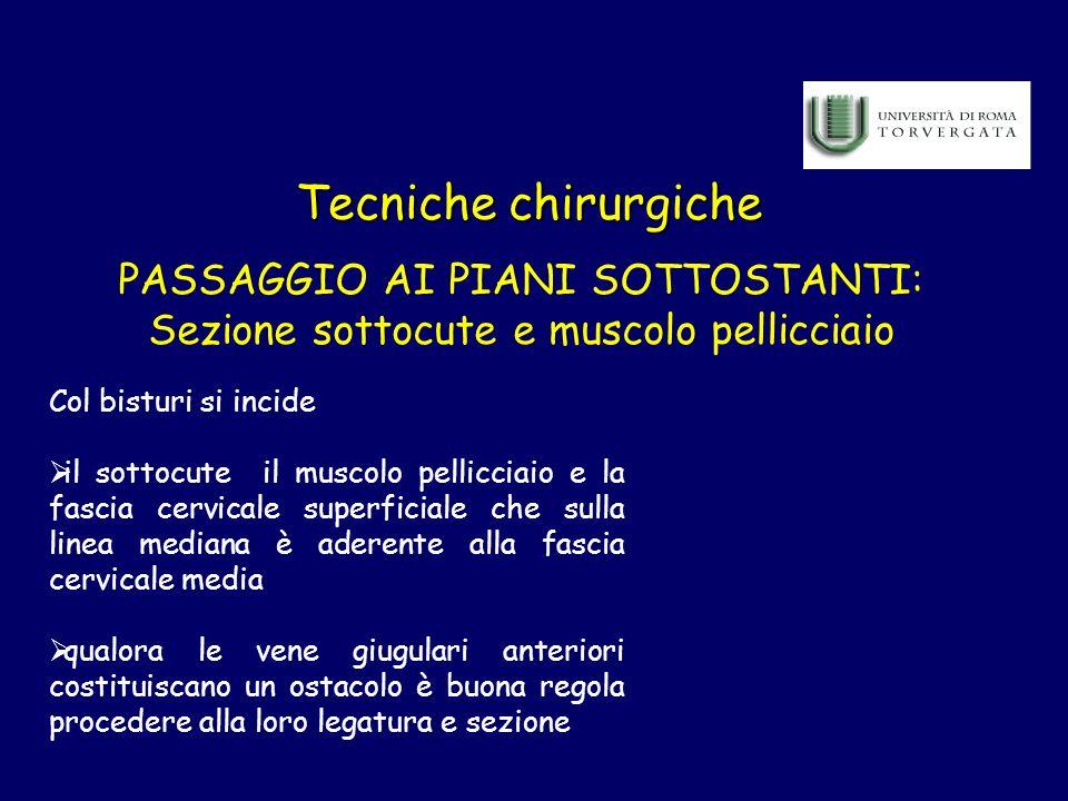 Tecniche chirurgiche PASSAGGIO AI PIANI SOTTOSTANTI: Sezione sottocute e muscolo pellicciaio Col bisturi si incide il sottocute il muscolo pellicciaio