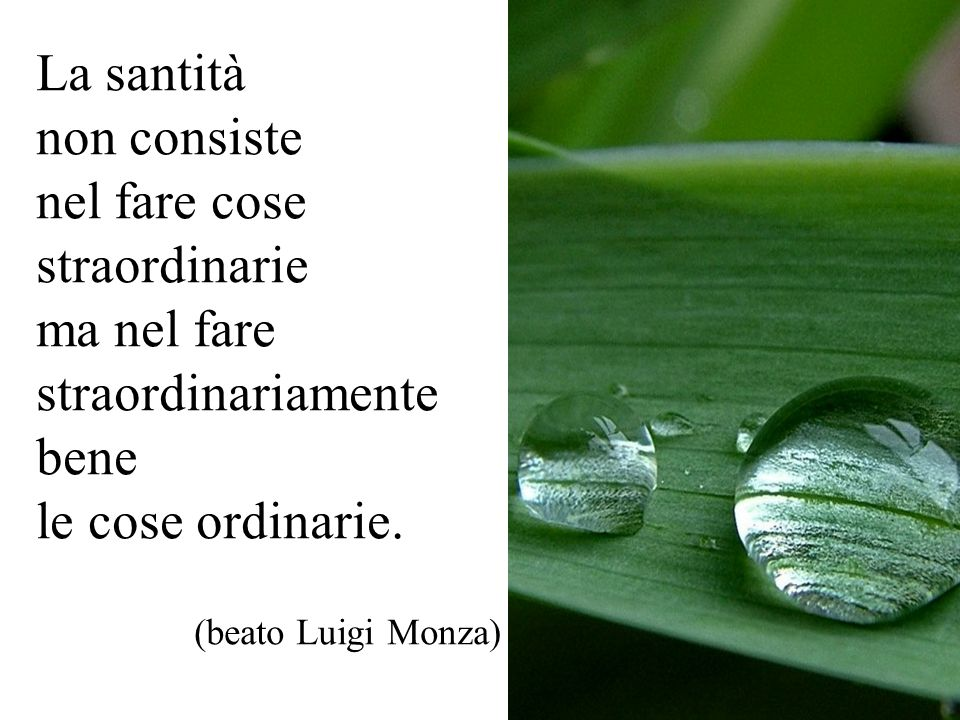 La santità non consiste nel fare cose straordinarie ma nel fare straordinariamente bene le cose ordinarie. (beato Luigi Monza)
