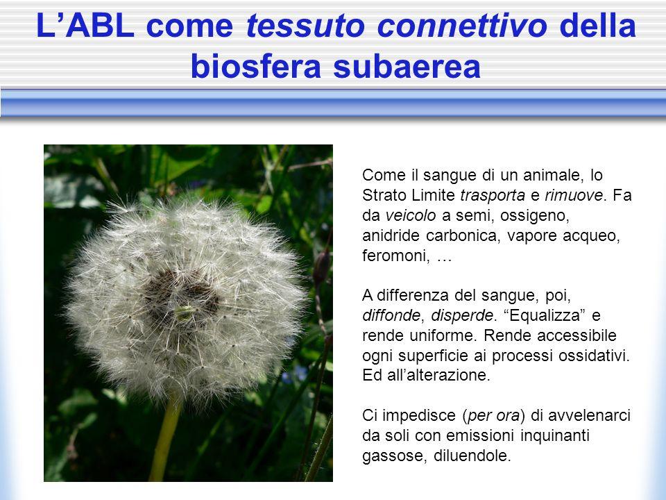 LABL come tessuto connettivo della biosfera subaerea Come il sangue di un animale, lo Strato Limite trasporta e rimuove. Fa da veicolo a semi, ossigen