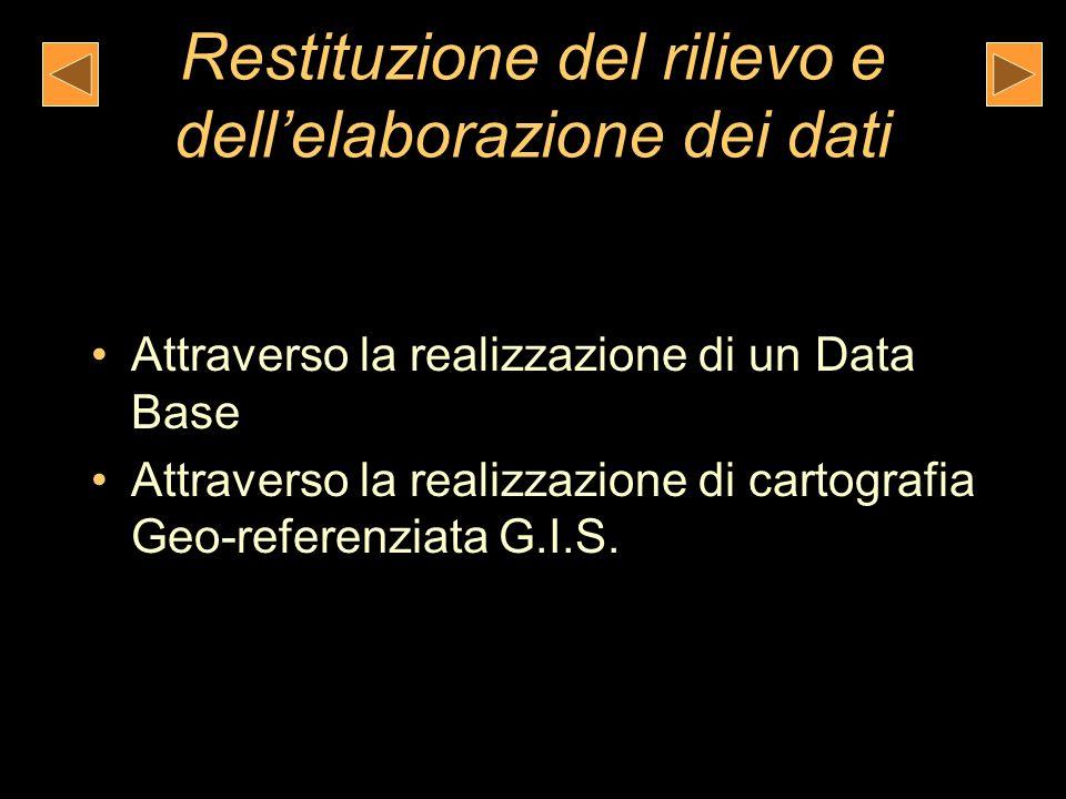 Restituzione del rilievo e dellelaborazione dei dati Attraverso la realizzazione di un Data Base Attraverso la realizzazione di cartografia Geo-referenziata G.I.S.