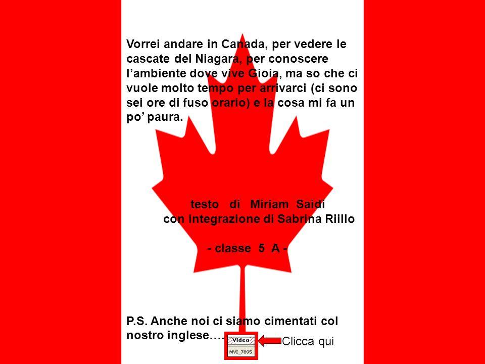 Vorrei andare in Canada, per vedere le cascate del Niagara, per conoscere lambiente dove vive Gioia, ma so che ci vuole molto tempo per arrivarci (ci