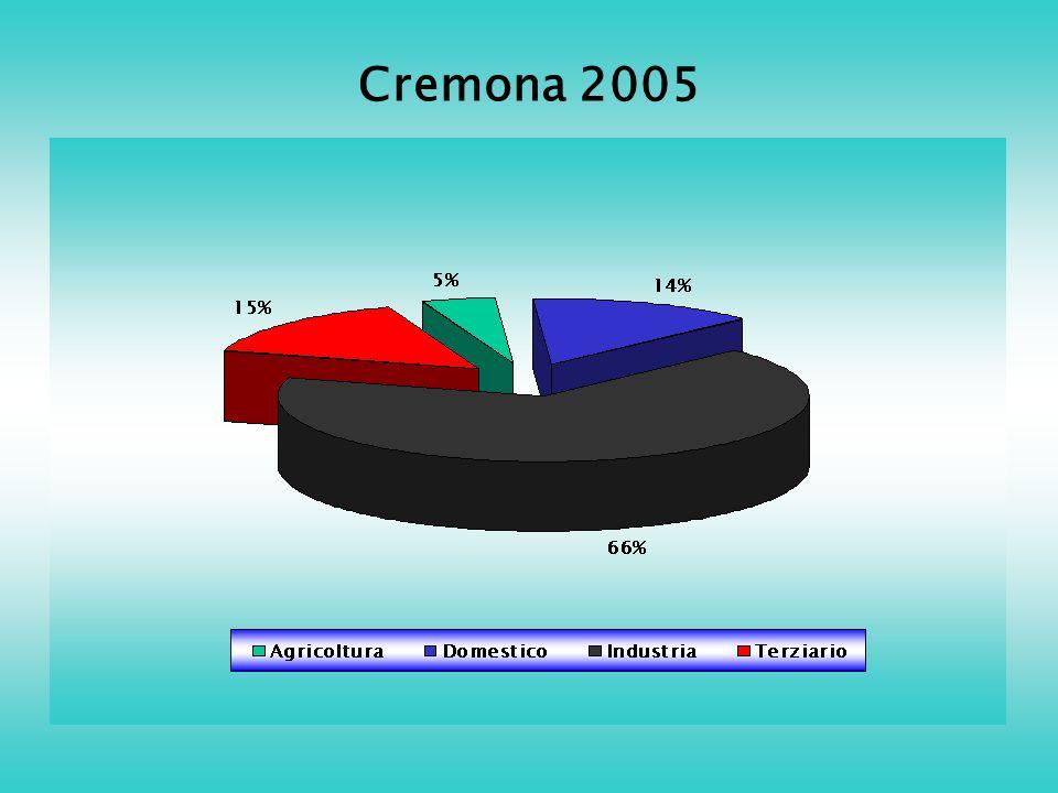 Cremona 2005