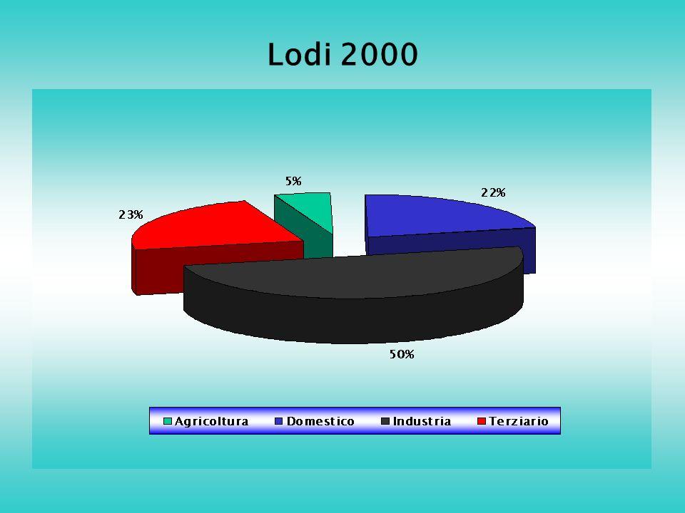 Lodi 2000
