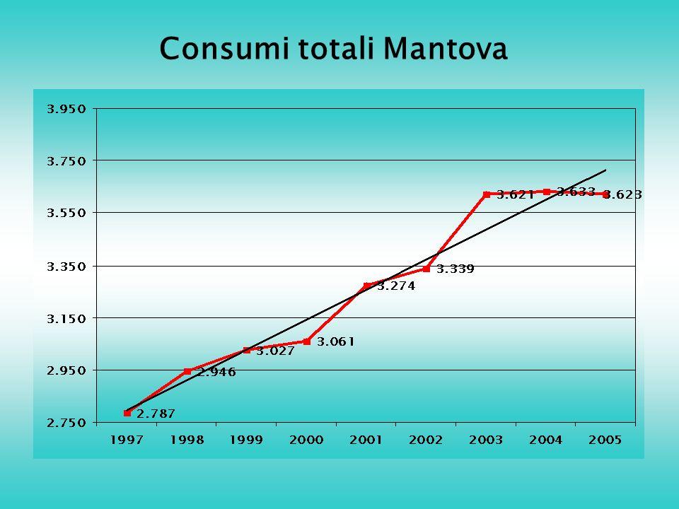 Consumi totali Mantova