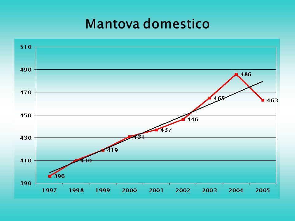 Mantova domestico