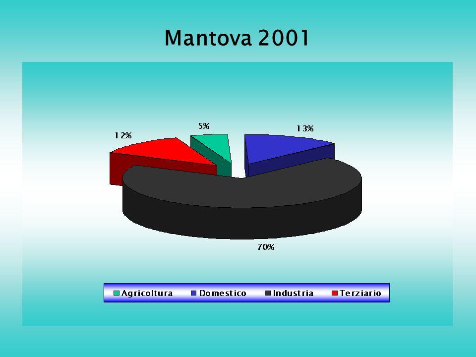 Mantova 2001