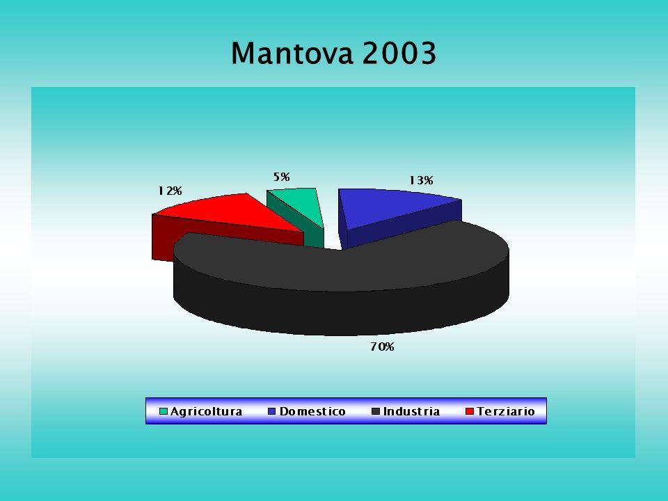 Mantova 2003