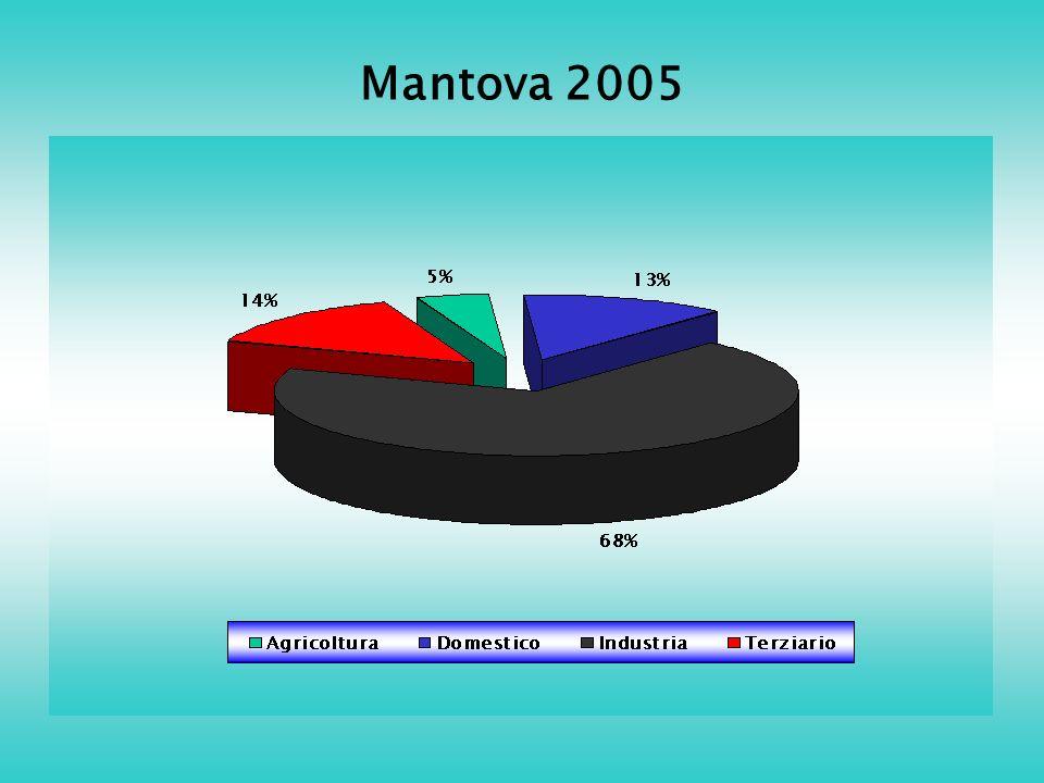 Mantova 2005