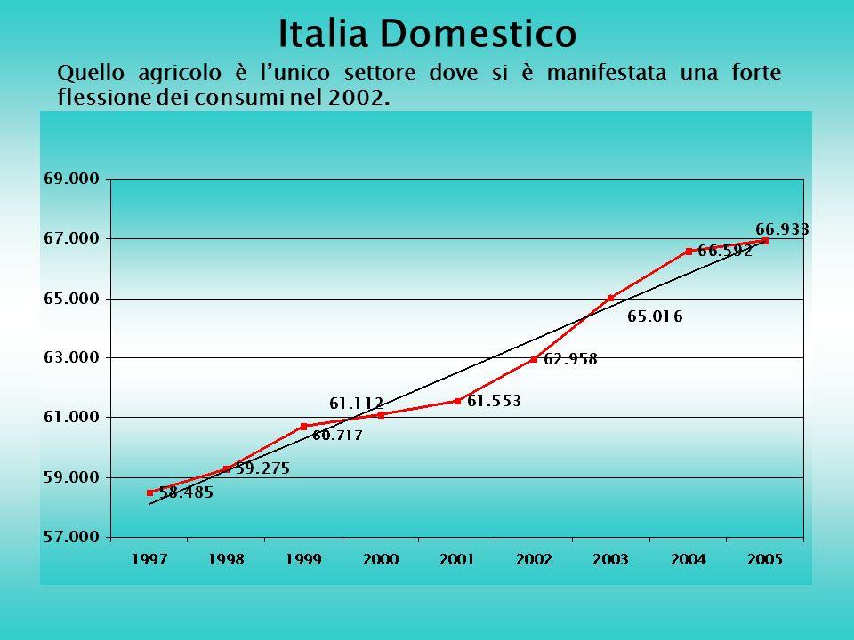 Italia Domestico Quello agricolo è lunico settore dove si è manifestata una forte flessione dei consumi nel 2002.