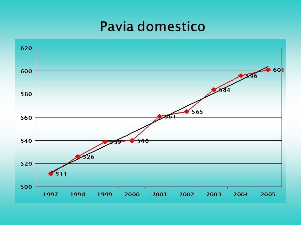 Pavia domestico