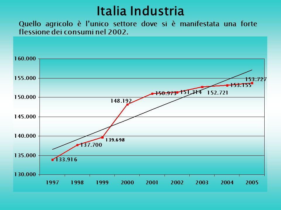 Italia Industria Quello agricolo è lunico settore dove si è manifestata una forte flessione dei consumi nel 2002.