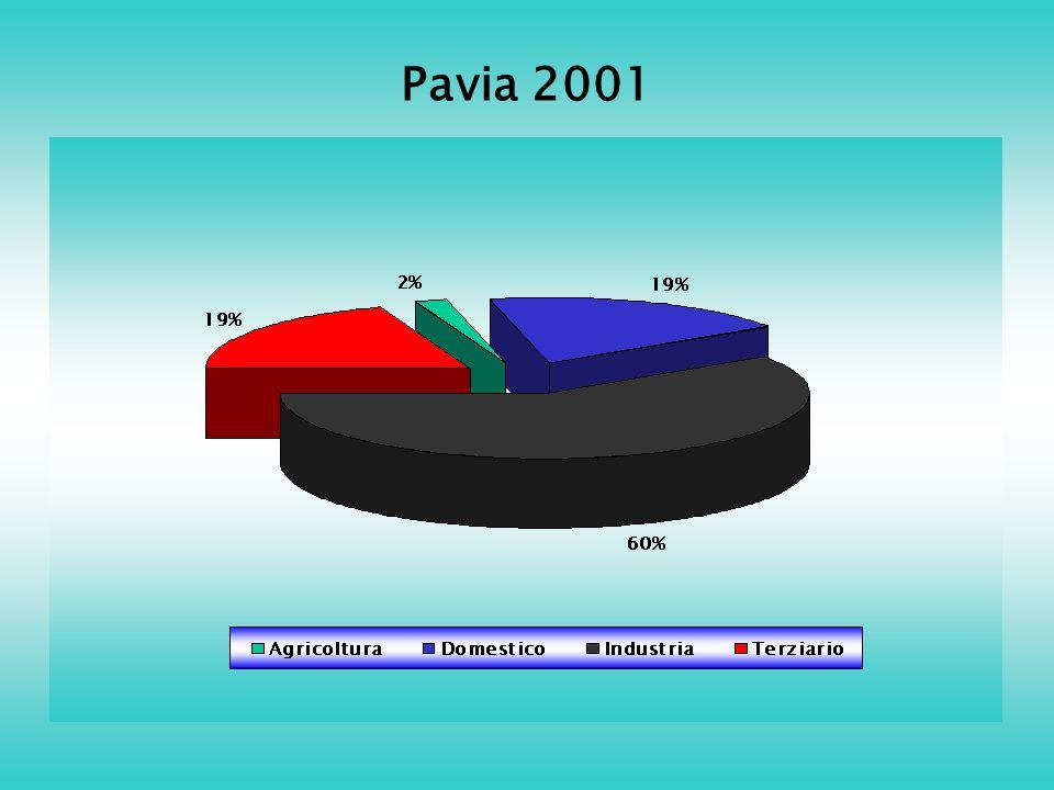 Pavia 2001