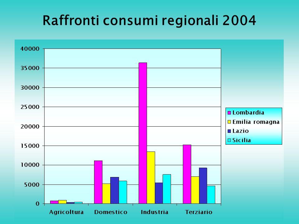 Raffronti consumi regionali 2004