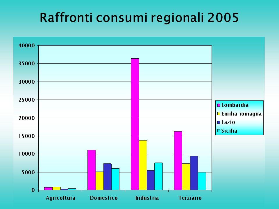 Raffronti consumi regionali 2005