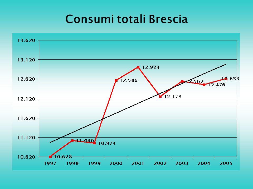 Consumi totali Brescia