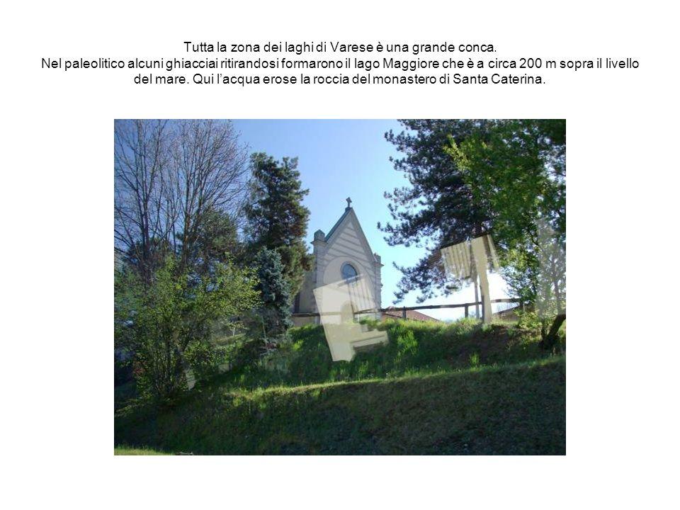 Tutta la zona dei laghi di Varese è una grande conca. Nel paleolitico alcuni ghiacciai ritirandosi formarono il lago Maggiore che è a circa 200 m sopr